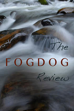 image of the fogdog review 2013 cover