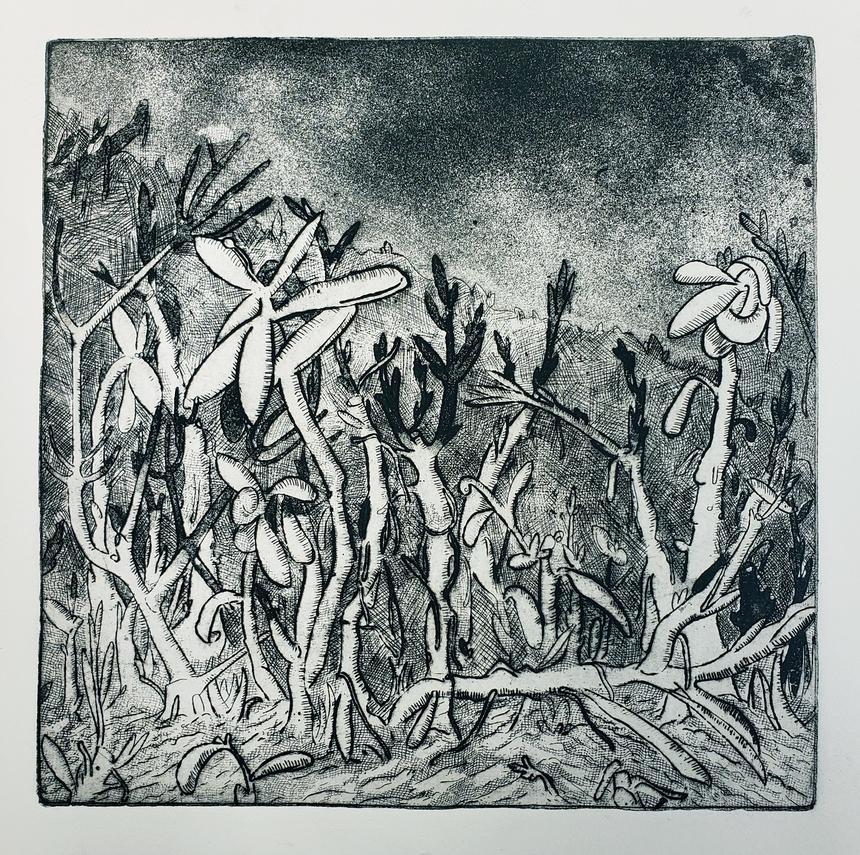 "Shekinah Brubaker, Printmaking Concentration, ""Succulent Forest"", Intaglio"