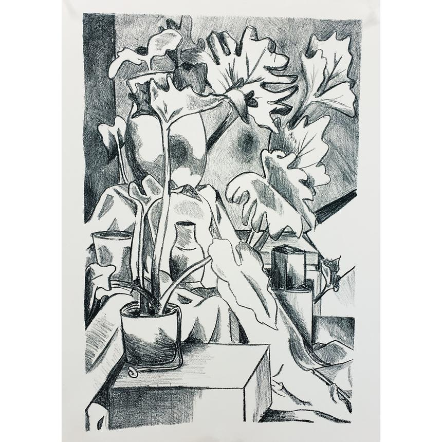 "Shekinah Brubaker, Printmaking Concentration, ""Plants in a Studio"", Lithography"