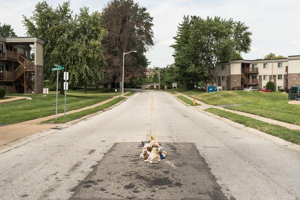 The Murder of Michael Brown, Ferguson, Missouri, 2016